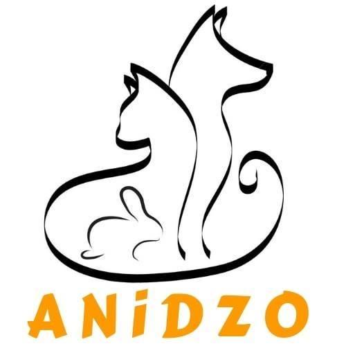 ANiDZO